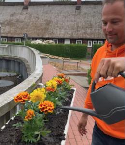 Blumenpracht am Schulteich in Meckelfeld